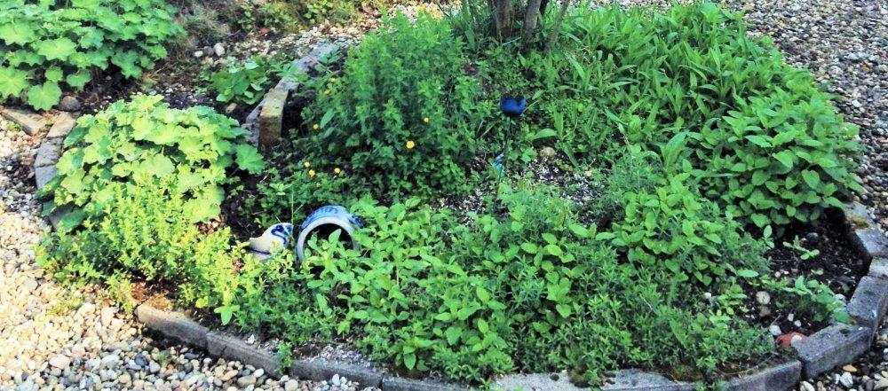 Kräutergarten - das kleine Glück